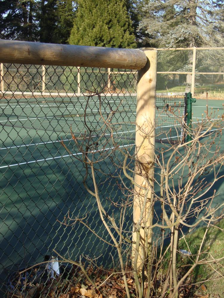 tennis court cedar fence with chain link - Reliable Fence